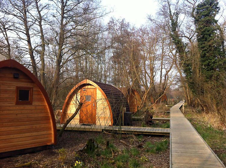 The Camping Pods at Deer's Glade.