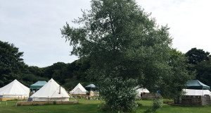 Glamping at The Grove in Cromer.